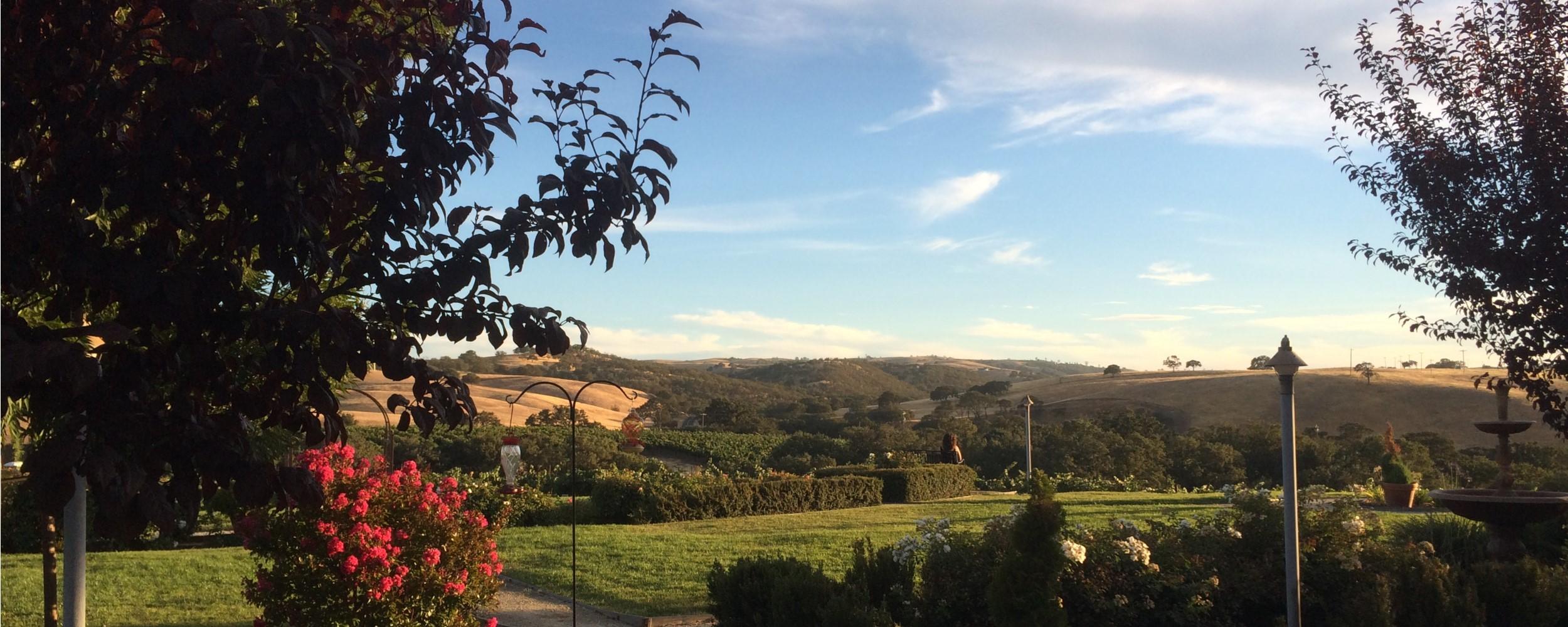 Home - Enjoying the View - 2500x1000