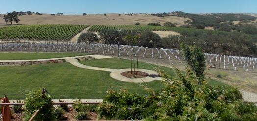 estate-vineyard-6
